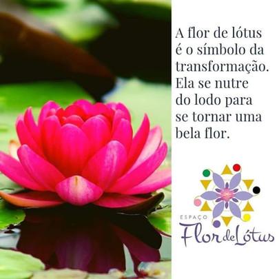 O Espaço Flor de Lótus