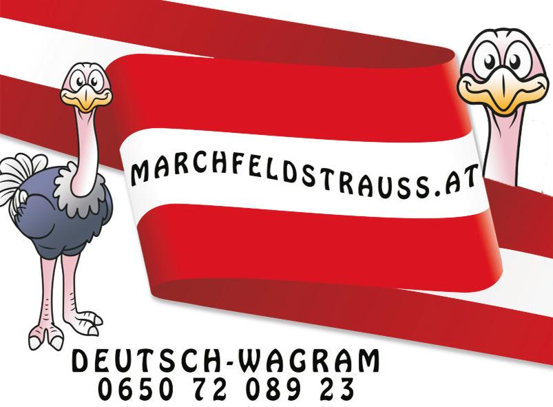 marchfeldstrauß