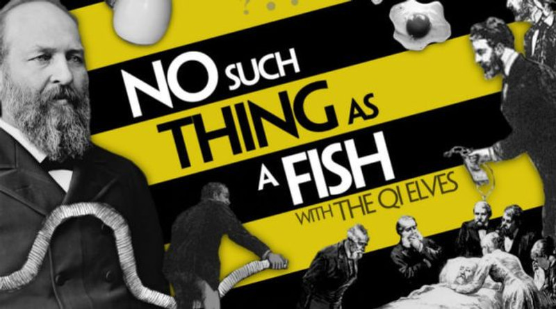no such thing as a fish podcast