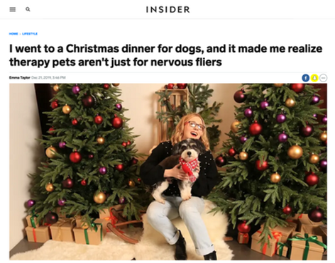 I went to a Christmas dinner for dogs, and it made me realize therapy pets aren't just for nervous fliers