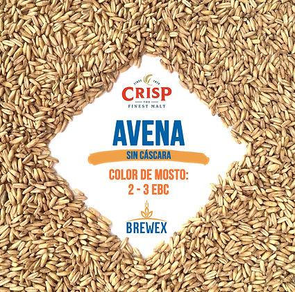 AVENA NAKED CRISP BREWEX.INSTI.jpg