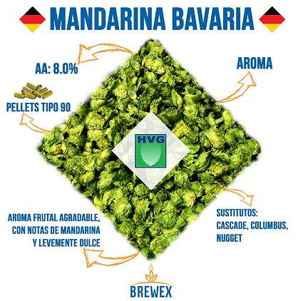 MANDARINA BAVARIA BREWEX.INSTI.2.jpg