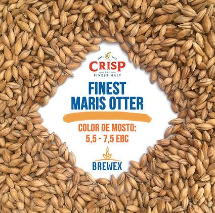 MARIS OTTER CRISP BREWEX.INSTI.jpg