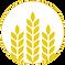 iconos productos brewex-05.png