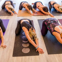 We are a YOGA FAMILY & tight community.