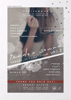tender sound vol.2 フライヤー