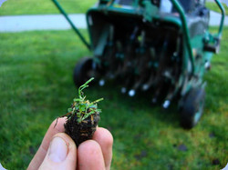 leawood-lawn-care-aeration_edited