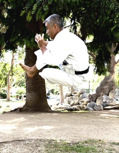 Sensei Toru Shimoji Unsu Jump