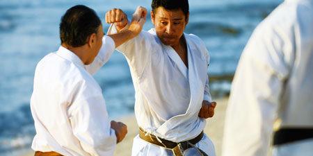 Shotokan Karate a History