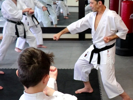 Form and Principles in Karate