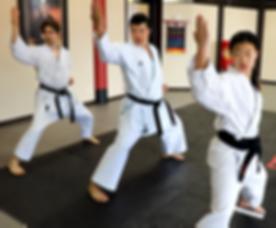 Karate.00_00_00_14.Still011.png