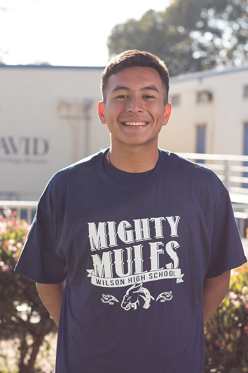 Mighty Mules White Print