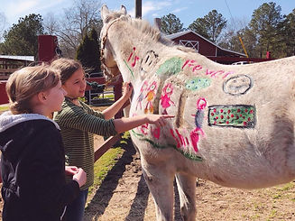 King's Stables Equine Therapy Program of