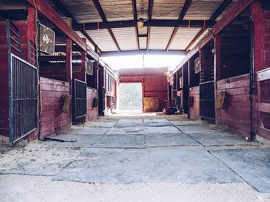 King's Stables Barn_Equine Program of Ki