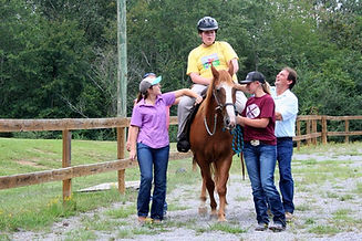 Equine Therapy at King's Stables the Equ
