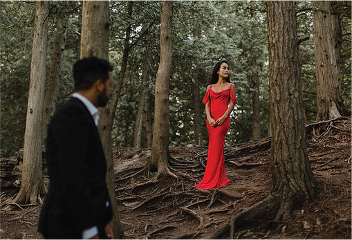lady-in-woods-red-dress.png