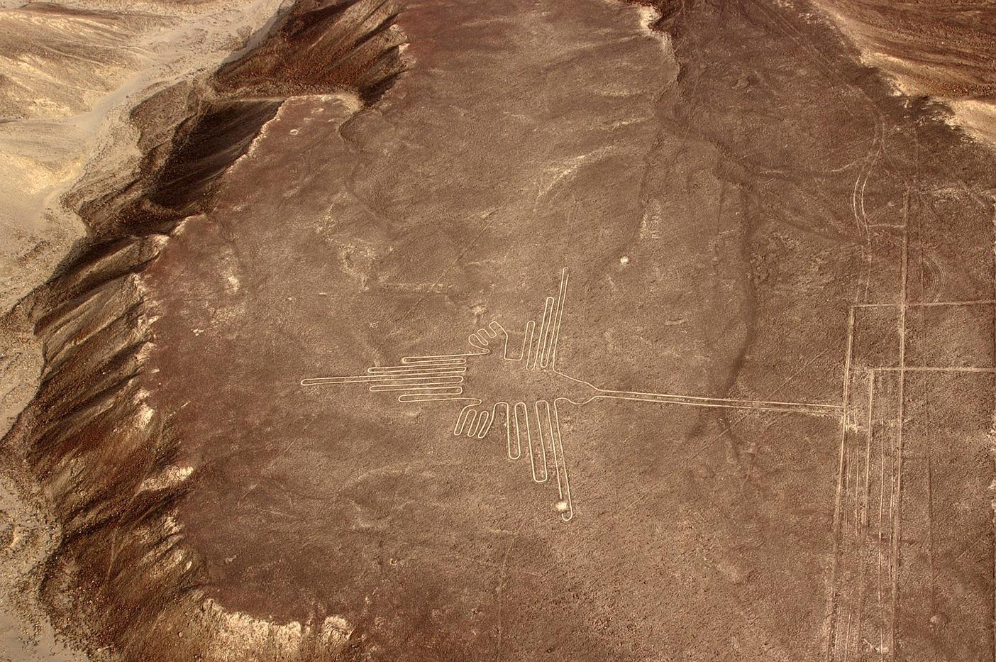 Nazca lines - Bird