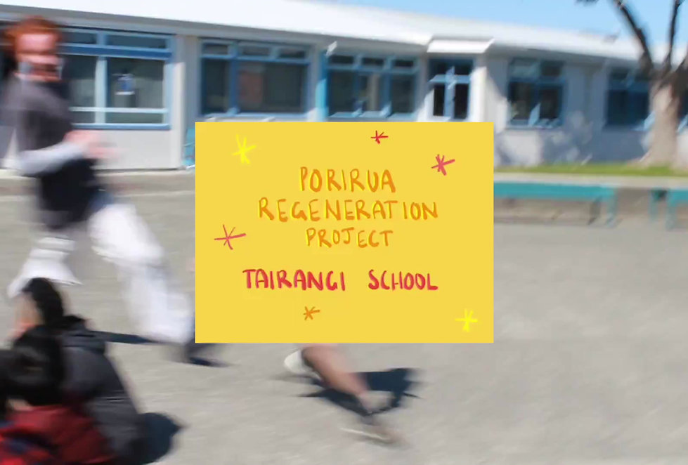 This is part of a video created by our Ignite team who partnered with Tairangi School