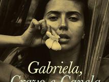 """Opinião: """"Gabriel, cravo e canela"""" de  Jorge Amado"""