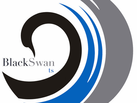 Black Swan ts: Opening new responses to emerging security needs.