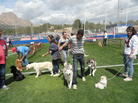 El VI Concurso Provincial Canino de La Nucía congregó 2.000 personas y 200 perros