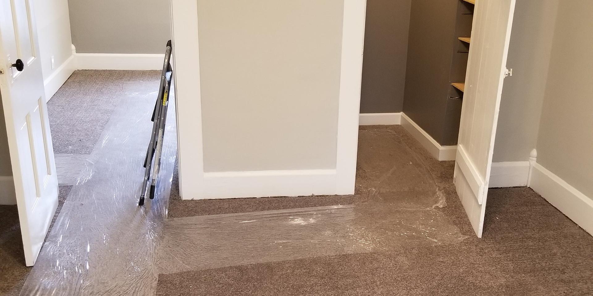 Carpet Installation/Full Home Paint