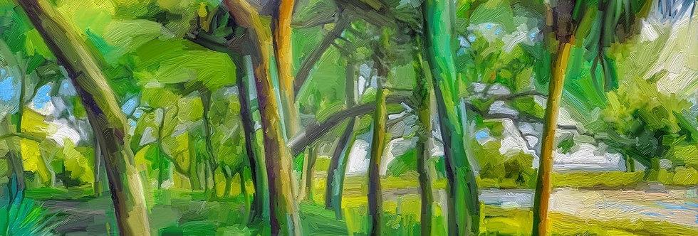 """""""Green Shores"""" 20x14"""" Gallery Wrap Canvas"""