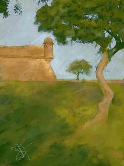 Castillo Trees