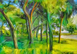 Green Shore Trees
