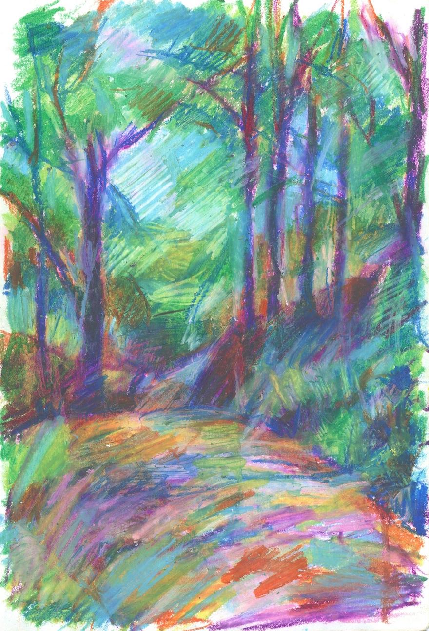 Illogan Woods