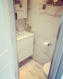 Under stairs toilet conversion