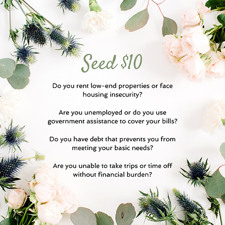 $10 Seed Option for people who rent low-end properties or face housing insecurity, are unemployed or use government assistance, and have debt that prevents them from meeting their basic needs.