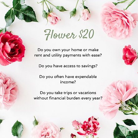 $20 Flower option for people who own their home or make their rent and utility payments with ease, have access to saving and often have expendable income.