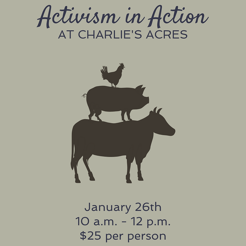 Activism in Action at Charlie's Acres
