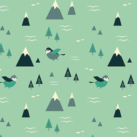 web mountains 2x2.jpg