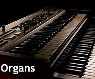info Strip Organ.jpg
