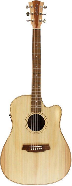 Cole Clark Fat Lady 2: Bunya top with Blackwood back and sides