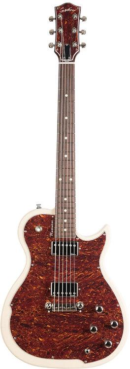 Godin Radiator Guitar New