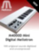 Strip Mellotron  .jpg