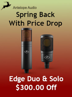 Sale Edge Spring.jpg