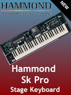 Strip Mar New SK Pro.jpg