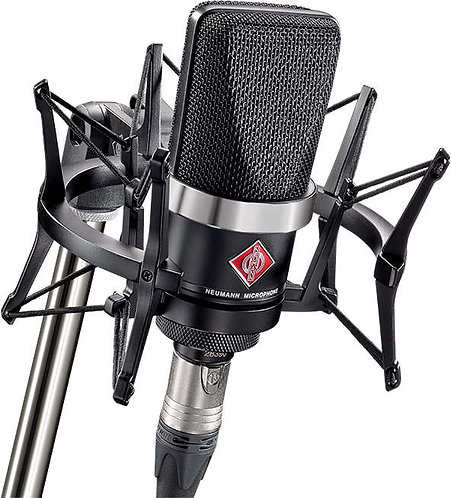 Neumann TLM 102 Studio Set: cardioid condenser  mic with shock mount