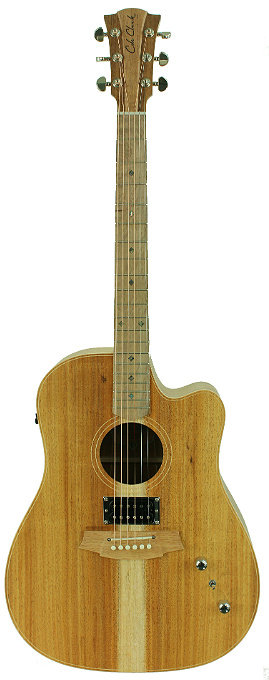 Cole Clark Fat Lady 2: All Blackwood with dual outputs.
