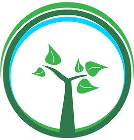 eco clean 1.jpg