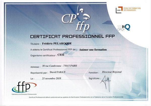 Certificat professionnel OPQF.JPG