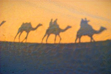 indian-camel-1335764_edited_edited.jpg
