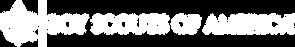BSA transparent logo.png