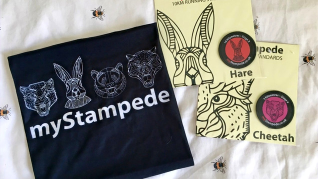 What do I think?: myStampede embroidered running patches