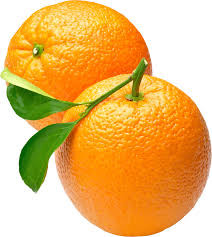 RHHS Band: Last Call (almost) for Citrus Fruit