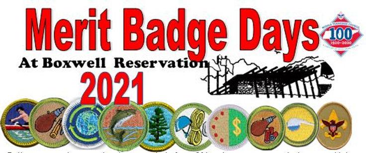 Meritbadge days logo website.JPG